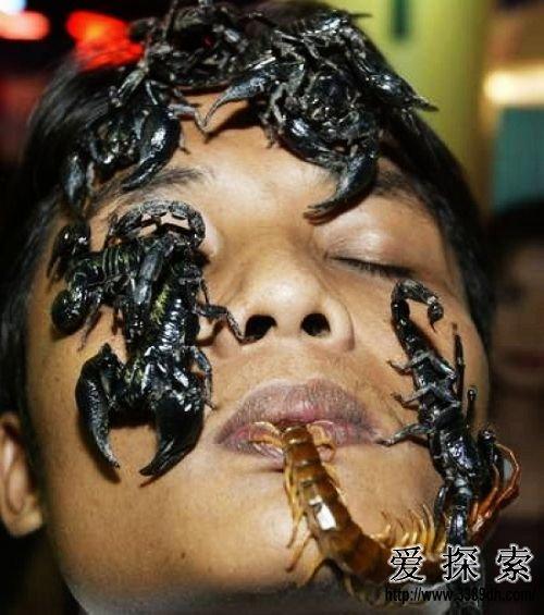 """猛男破处女视频_泰国""""猛男""""与千只蜈蚣同居28天"""