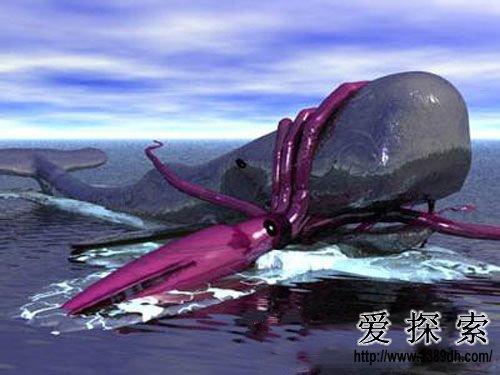 无脊椎动物之一,也是世界上第二大的乌贼(第一大