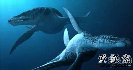 这10大史前海洋巨兽 如果还活着定称霸世界!   1、邓氏鱼   邓氏鱼活在古生代泥盆纪时期(约3.6亿至4.15亿年前),身体庞大,长约8米,重量可达3.4吨,咬合力可达500千克!邓氏鱼是泥盆纪时代最大的海洋猎食者,可谓是当时的顶级掠食者。  (上图)邓氏鱼   2、滑齿龙   滑齿龙是一种海洋爬行动物,在侏罗纪晚期,约1亿6000万年前到1亿5500万年前。滑齿龙嗅觉惊人,即使在水中很远也能闻到猎物。而且它有4片动力惊人的桨鳍,一旦发现猎物马上飞快地游过去,很少能从他手中逃脱的。而且滑齿龙的长颚