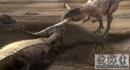 恐龙吃动物图片